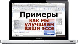 Examples essay