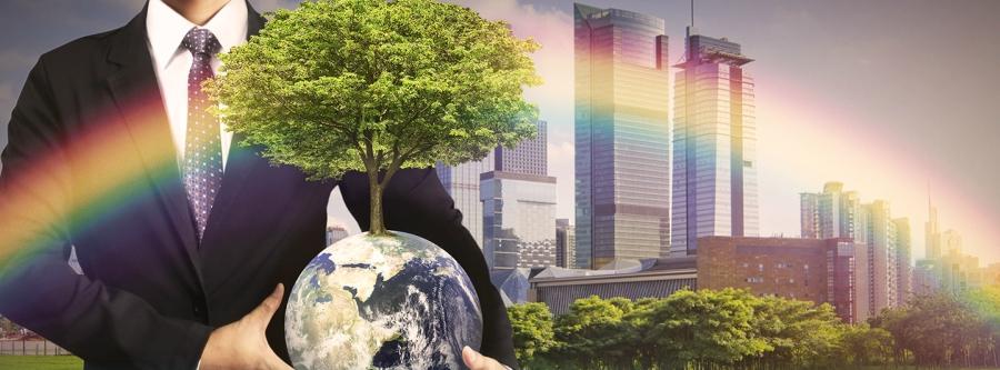 Обучение Corporate Social Responsibility и Sustainable Development за рубежом
